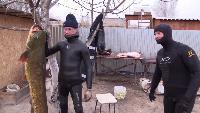Астраханские будни #8 - подводная охота. Трофейный сом. Взвешивание. Разделка Сома. Баня.