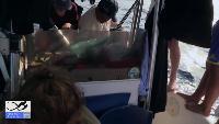 Панамские будни #10. Вторые сутки в море. Самодельный флаг. Укрытие от солнца.
