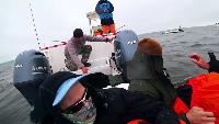 Спасли кита на шантарских островах.