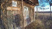 Заброшенная деревня. Музей. Смоленская область.