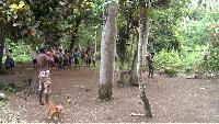 Вануату. Воскрешение традиций. Фильм 3