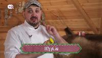 Борщ шоу Сезон-1 Серия 15