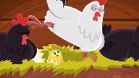 Серия 101. Цыпленок