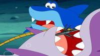 Гавань ракушек 1 сезон 12 серия. Раненая акула