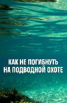 Как не погибнуть на подводной охоте смотреть