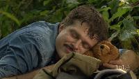 Сладкий сон в джунглях