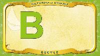 Английский алфавит - Letter B - Beetle