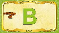 Английский алфавит - Letter B - Boa