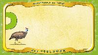 Мультипедия животных Немецкий алфавит Немецкий алфавит - Buchstabe E - das Perlhuhn