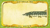 Мультипедия животных Немецкий алфавит Немецкий алфавит - Buchstabe H - der Hecht