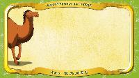 Мультипедия животных Немецкий алфавит Немецкий алфавит - Buchstabe K - das Kamel