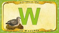 Мультипедия животных Немецкий алфавит Немецкий алфавит - Multipedia der Tiere. Buchstabe W - die Wachtel
