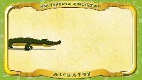 Польский алфавит - Litera A - Aligator