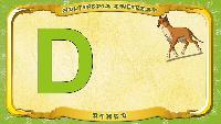 Польский алфавит - Litera D - Dingo