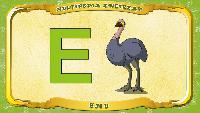 Польский алфавит - Litera E - Emu