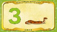 Русский алфавит - Серия 34 - Буква З - Змея