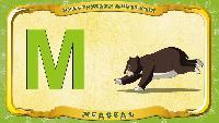 Русский алфавит - Серия 49 - Буква М - Медведь