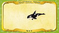 Мультипедия животных Українська абетка Українська абетка - Літера К - Кит