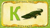 Мультипедия животных Українська абетка Українська абетка - Літера К - Крокодил