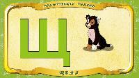 Мультипедия животных Українська абетка Українська абетка - Літера Щ - Щеня