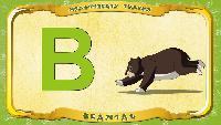 Мультипедия животных Українська абетка Українська абетка - Літера В - Ведмідь