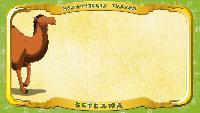 Мультипедия животных Українська абетка Українська абетка - Літера В - Верблюд