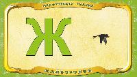 Мультипедия животных Українська абетка Українська абетка - Літера Ж - Жайворонок