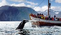 RideThePlanet: Norway. Lofoten Islands